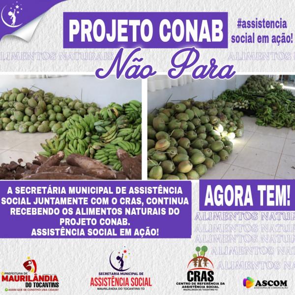 Alimentos Naturais do projeto Conab